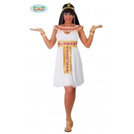 80504 - EGIPCIA